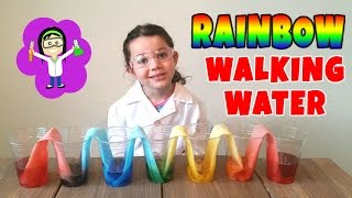 Rainbow Walking Water Easy Science Projects Experiments for Kids   The Science Kid