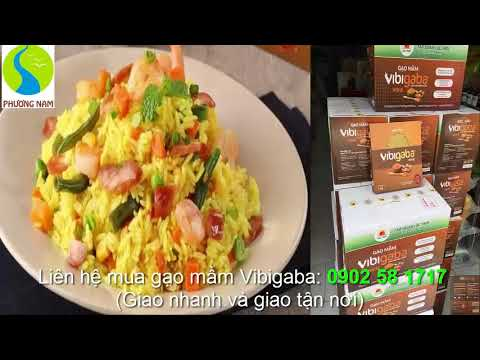 Mua gạo mầm Vibigaba chính hãng ở đâu tại TP.HCM?