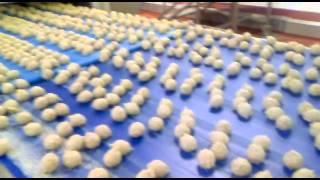 Scotch eggs production