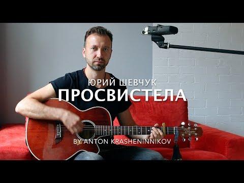 Юрий Шевчук (ДДТ) - Просвистела (cover - Антон Крашенинников)