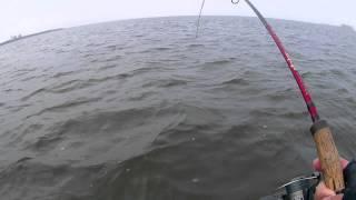 Рыболовная база камский просторы