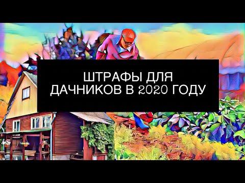 НОВЫЕ ШТРАФЫ ДЛЯ ДАЧНИКОВ В 2020 ГОДУ