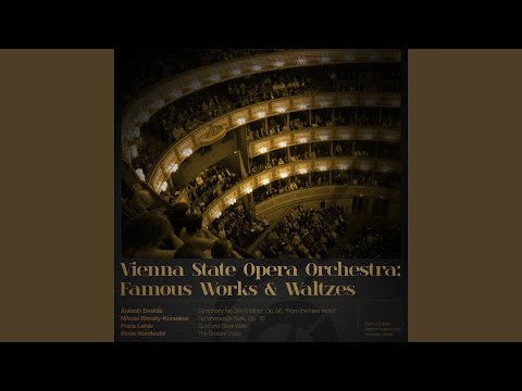 Concerto for Piano and Orchestra: I. Largo non troppo - allegro agitato
