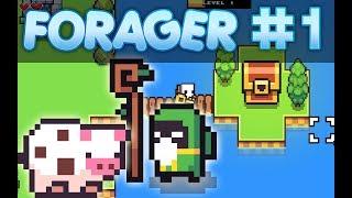 videó Forager