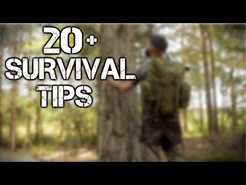 20 Wilderness Survival Tips and Bushcraft Skills