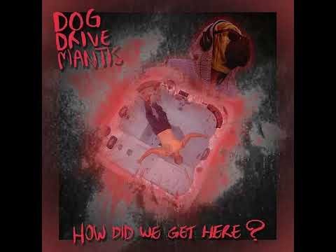 Dog Drive Mantis -
