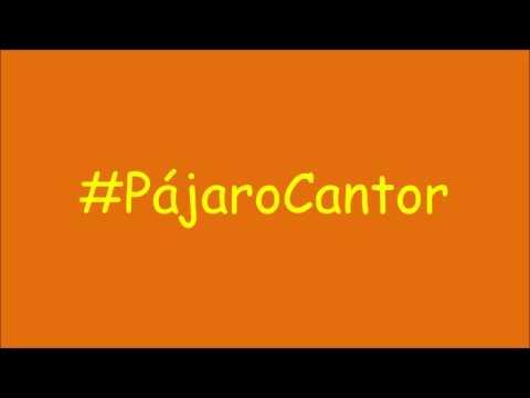 Pájaro Cantor (con letra) - Abel Pintos