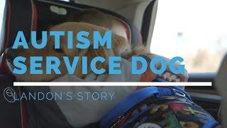 Autism Service Dog Feature: Landon's Story