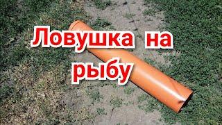 Ловушка для рыбы из трубы пластиковой
