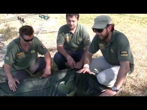 Nuovo video su pesca in una carpa
