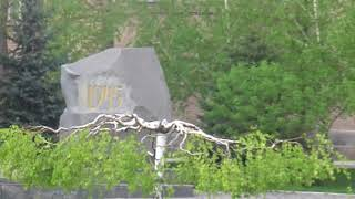 Территория ЗНУ, апрельская прогулка, весенняя зелень и котик возле общежития. :)