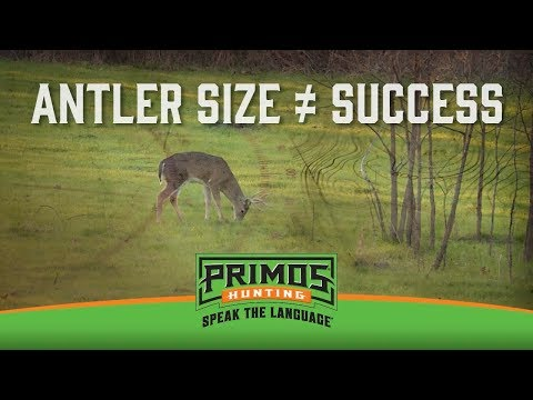 Why Antler Size Doesn't Always Spell Success video thumbnail