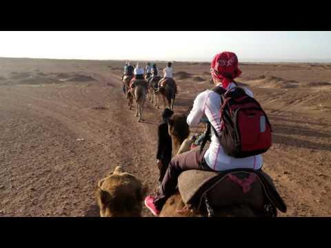 Езда на камили в Сахара