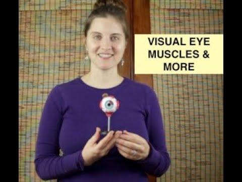 Lehetséges-e egy ideig javítani a látást?