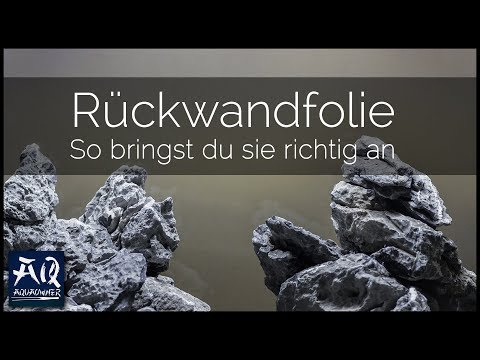 SO BRINGST DU EINE RÜCKWANDFOLIE AN | Hintergrundfolie für dein Aquarium | AquaOwner