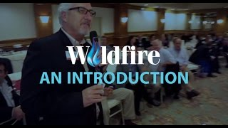 Wildfire Networking - Business Networking Los Angeles