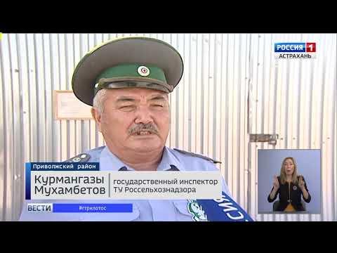 Россельхознадзор провел мониторинг мест захоронения биологических отходов на территории Астраханской области