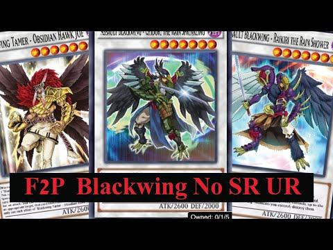 (Yu-Gi-Oh! Duel Links)รีวิว Blackwing No SR or UR Card  เซฟเงินสู้ชีวิตสิ้นเดือน (EP.469)