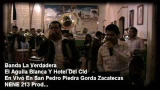 preview picture of video 'san pedro piedra gorda zacatecas 2009'