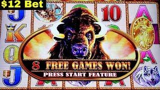 5c Buffalo Gold $12 Bet Bonus Won   LIGHTING LINK Slot Machine GREAT SESSION   Live Slot Play