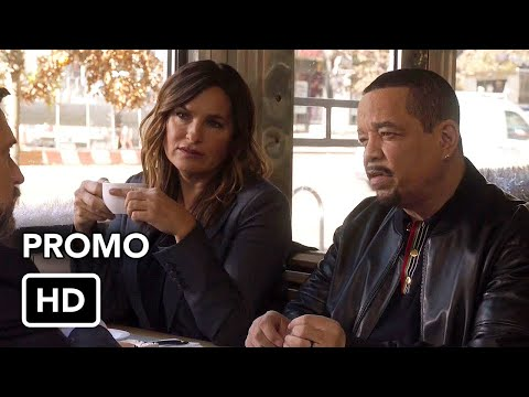 Law & Order: Special Victims Unit 22.04 (Preview)