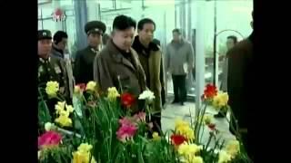 北 김정은 경례하는 모습 보며 '히죽'...간 큰 女 정체는?_120807_채널A NEWS