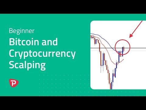 Verslo galimybės su bitcoin