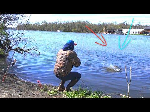 PESCANDO!! Carpas con Carnada 100% Efectiva!! , Masa Nueva para Pescar Carpas