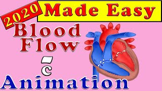 Human Circulatory System   The Heart and How the Blood Flows   Made Easy