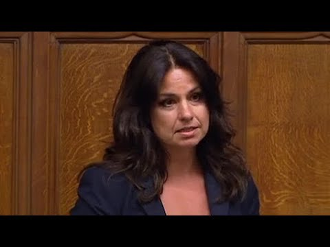 Tory MP discusses her own abortion in Commons Northern Ireland debate