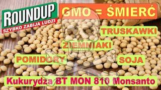 Nie tylko chemia dodawana do żywności jest niebezpieczna! GMO to ŚMIERĆ!