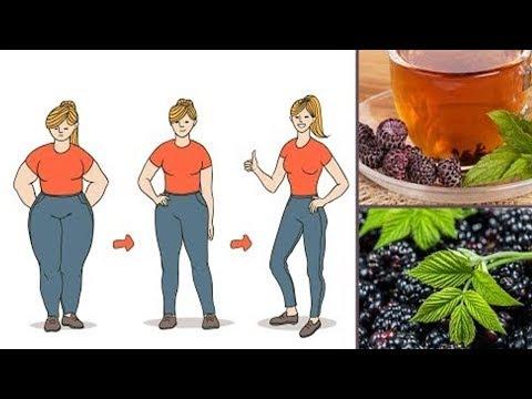 Jak przyspieszyć swój metabolizm schudnąć opinie domowych
