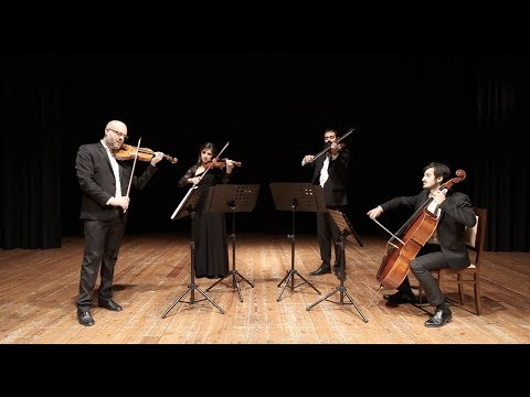 Quartetto Artemisia video preview