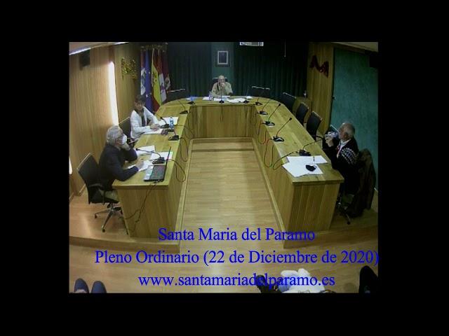 Pleno Ordinario (22 de diciembre de 2020)