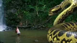 piranhaconda trailer