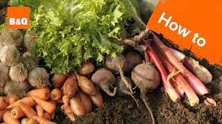 Thumbnail for An introduction to growing your own fruit & veg