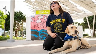 A New Life With Lady | Southeastern Guide Dogs