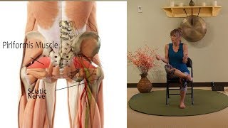 Where is the Piriformis Muscle & How Do you Stretch it? with Sherry Zak Morris