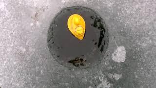 Эхолот Lucky FFW718 на зимней рыбалке