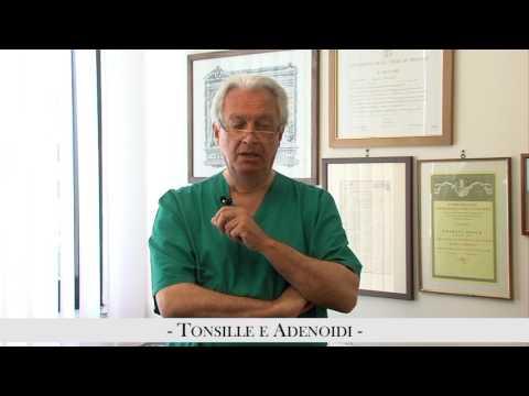 Kolomna ecografia della prostata