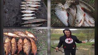 Рыбалке на реке осетр