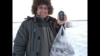 Рыбалка в белоярский свердловской области индекс