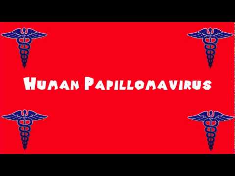 Papilloma virus vaccino gratuito