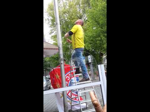 Dortmund Fan hisst die Bayern Flagge