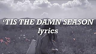 Taylor Swift - 'Tis The Damn Season (Lyrics)