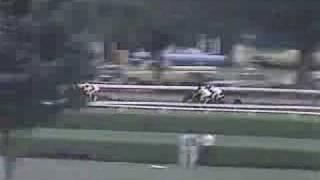 Runaway Groom - 1982 Travers Stakes