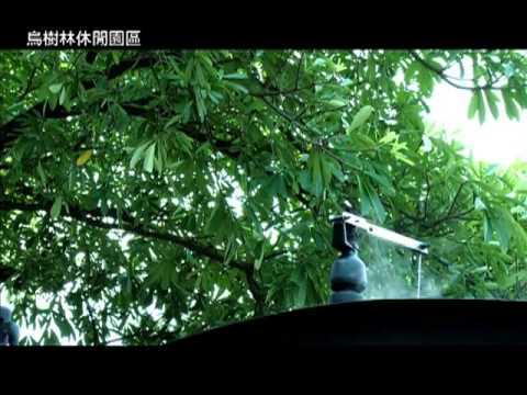 吳鳳在台糖 《烏樹林休閒園區》