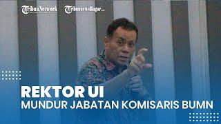 Rektor UI Ari Kuncoro Mundur dari Jabatan Komisaris BUMN