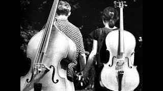 Love Story Theme - Double Bass Solo