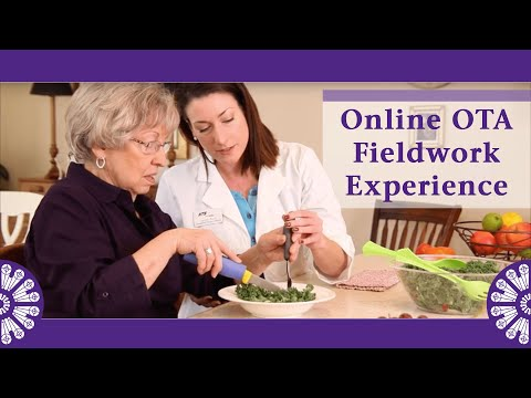 The Fieldwork Experience in St. Catherine's Online OTA Program ...